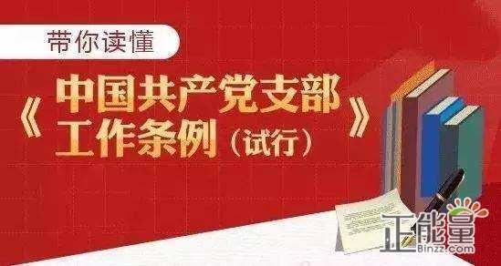 党委书记学习中国共产党支部工作条例心得体会精选3篇