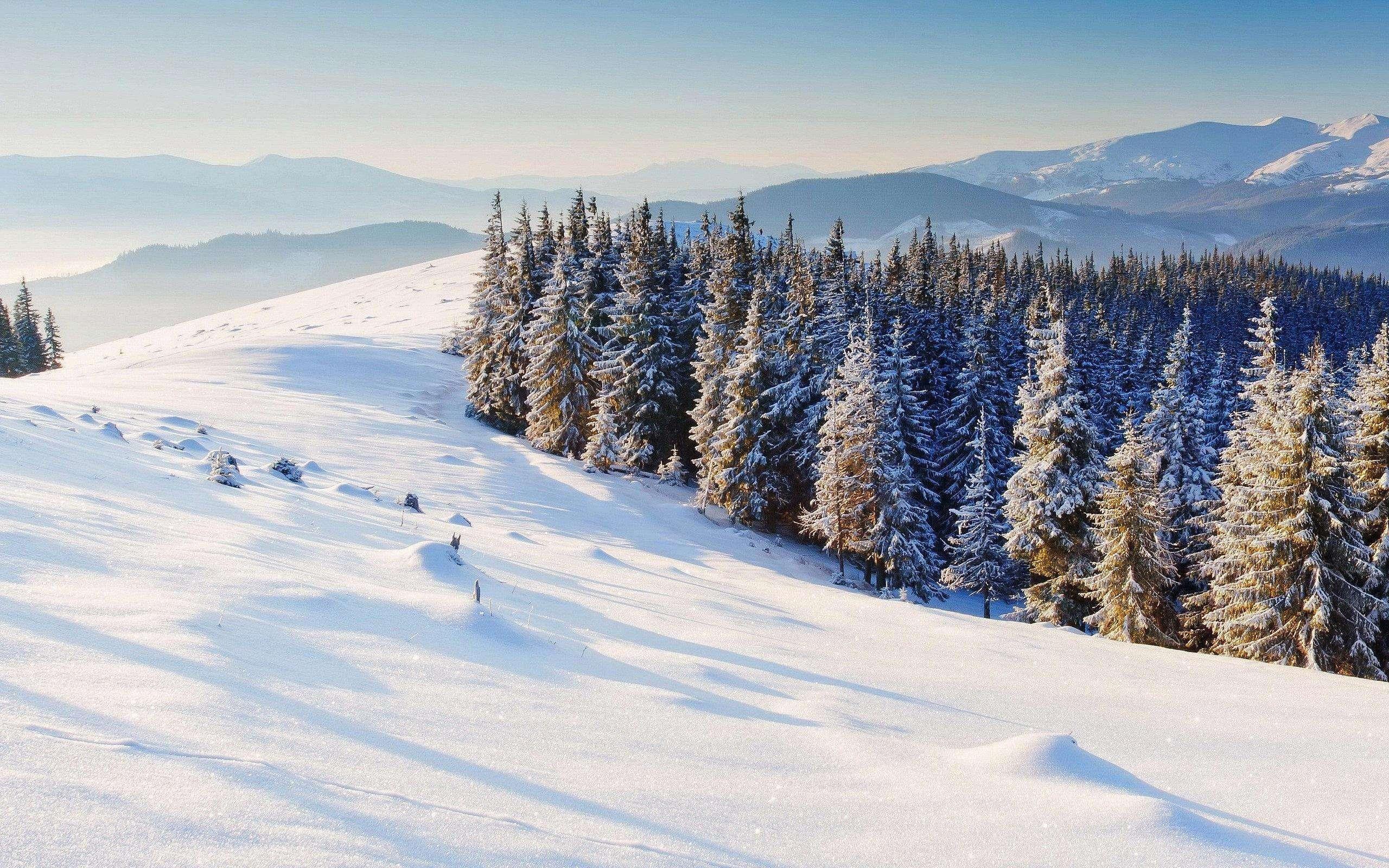 冬天作文500字以上范文:冬天好好