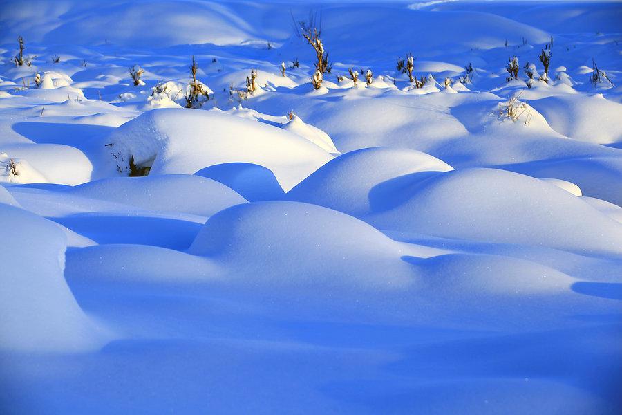 学生作文300字左右:冬天的雪