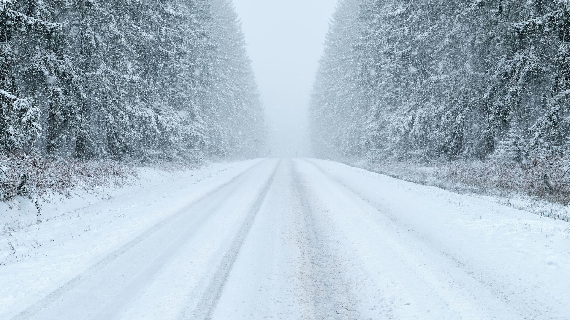 关于下雪的作文3篇