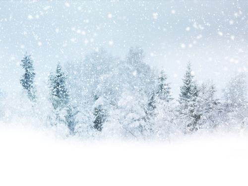 关于冬天的优美散文欣赏:可爱的冬天