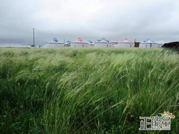 风与草随笔散文欣赏
