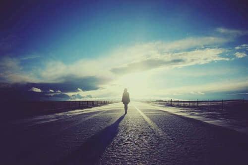 关于人生感悟的优美抒情散文:身边的风景
