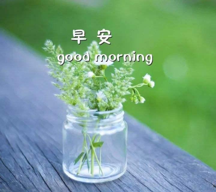 早安正能量励志心语送朋友的说说大全欣赏