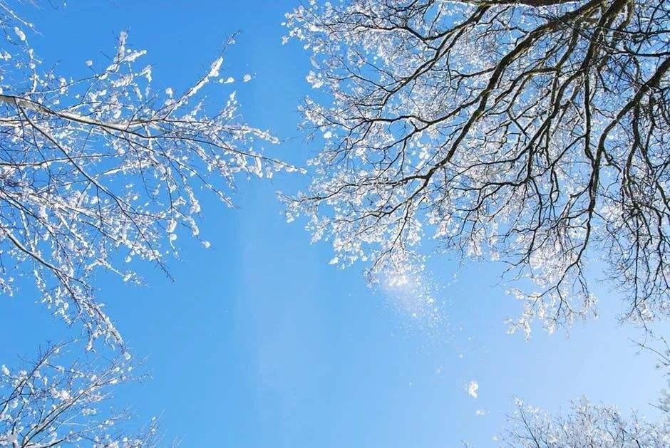 关于冬时光的优美散文600字