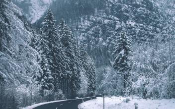 关于冬日的优美抒情散文:冬日思语