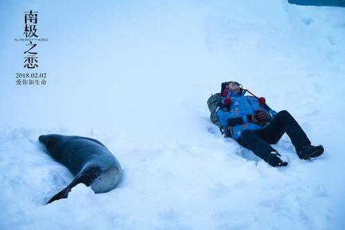 南极之恋好看吗?南极之恋观后感