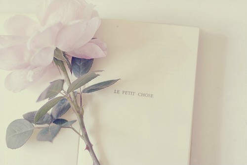 【情人节快乐表情包】用来表达情人节快乐的说说句子