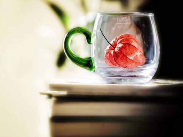 情侣网名诗意唯美浪漫_唯美浪漫有诗意的爱情经典说说