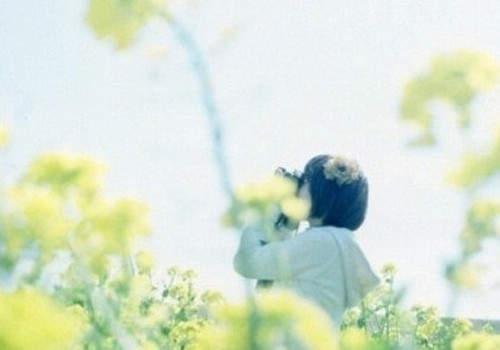 送给心爱的人最温柔最甜蜜的爱情说说