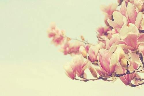 【情侣之间的套路】关于情侣之间相爱幸福的心情说说,句句说到心坎