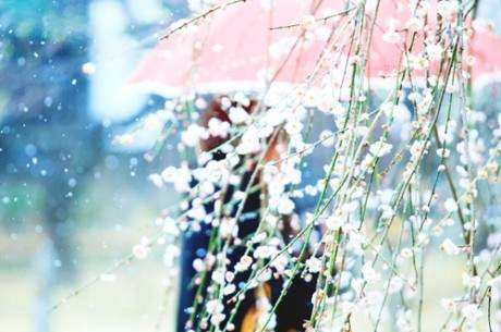 关于赞美竹子精神的诗句有哪些_关于赞美竹子精神的诗句有哪些?