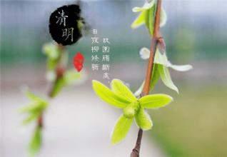 清明节祭祖缅怀祝福语