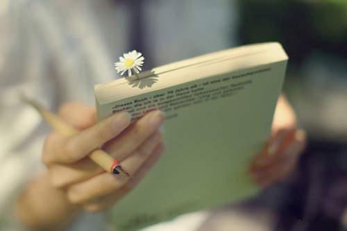 【相濡以沫爱情唯美句子】简洁唯美的爱情留言句子