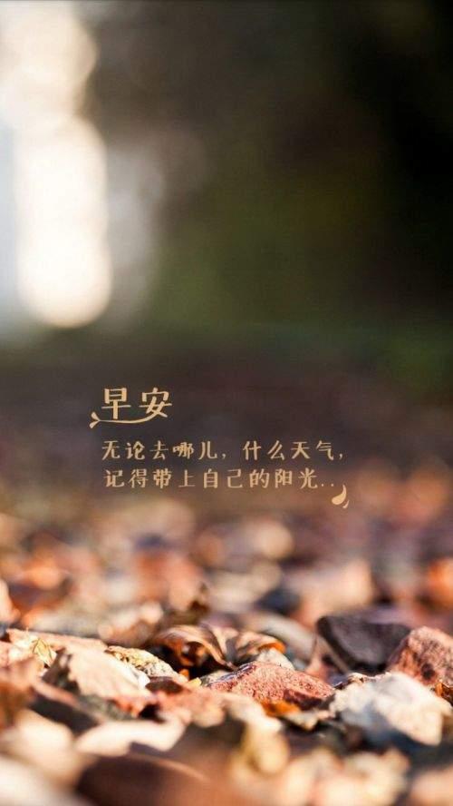 表達愛情的現代古詩【抒發相濡以沫愛情的古詩句精選】