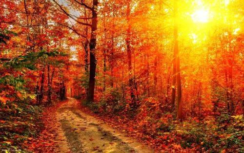 關于秋天的祝福語大全
