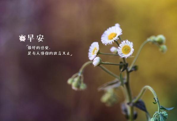 国庆节早安心语正能量祝福语