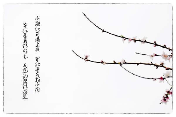 新年祝福语问候家人 [小雪给朋友家人送去问候祝福语]