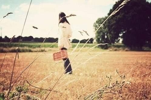 浪漫唯美的表白句子简短