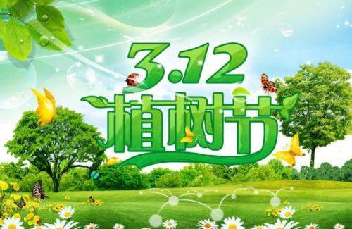 3月12植樹節活動總結范文