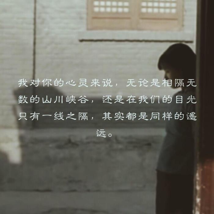 《一个陌生女人的来信》读后感:我爱你却与你无关