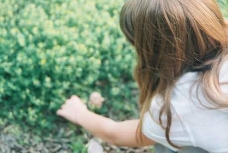 【三月开的什么花】三月,我开始想你了,唯有泪千行