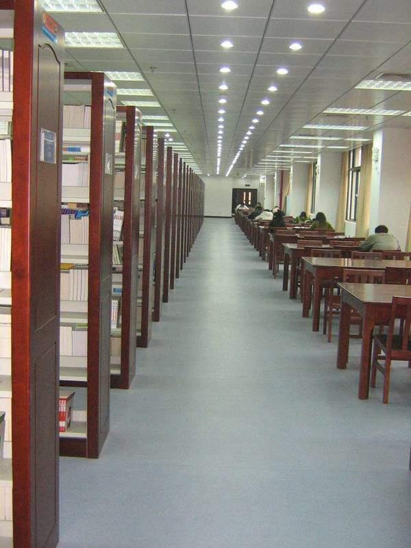 [图书馆的重要性]图书馆的重要性