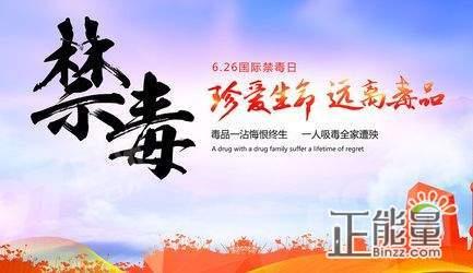 十九大报告提出,成立(),加强对法治中国建设的统一领导。