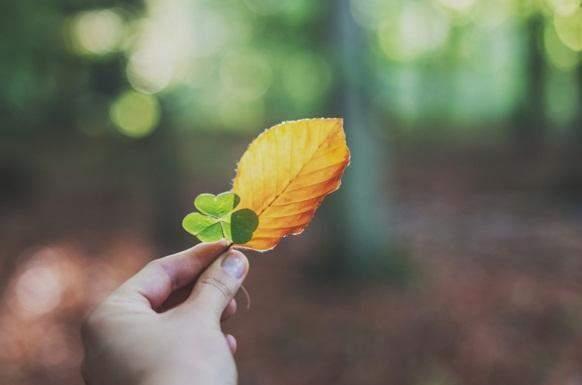 [早安励志说说正能量]早安励志说说致自己正能量语录大全