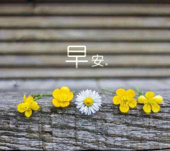 2018早安心语优美的语句精辟精选