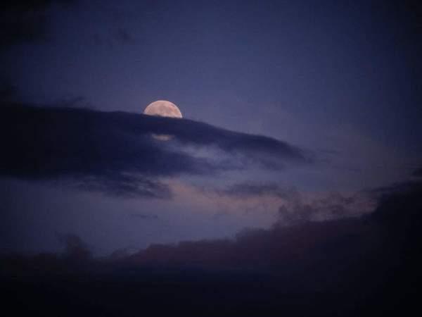 晚安励志语录简短_简短的晚安说说语录大全