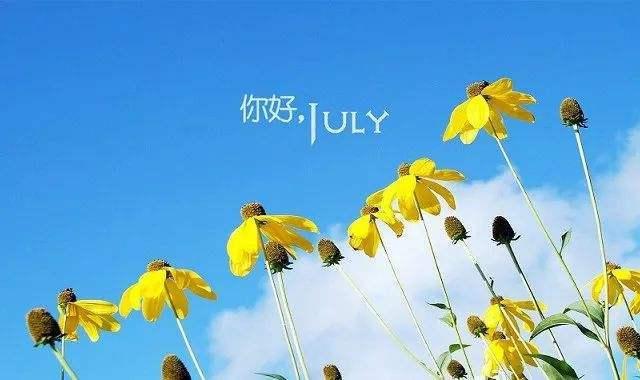 6月再见,7月你好经典语录