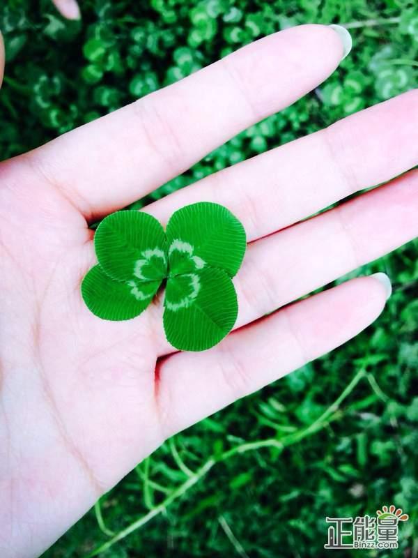 你是我最大的小幸运