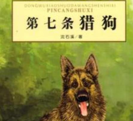 第七条猎犬读后感600字