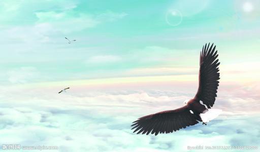 抖音上老鹰的一生的澳门威尼斯人在线娱乐平台语录视频:当你感觉生活欺骗了你