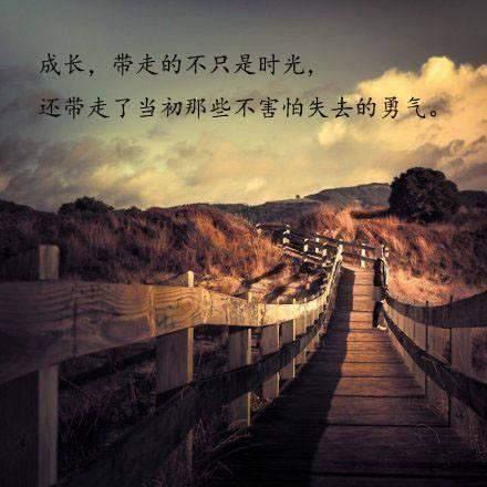 青春演讲稿精选:青春无悔