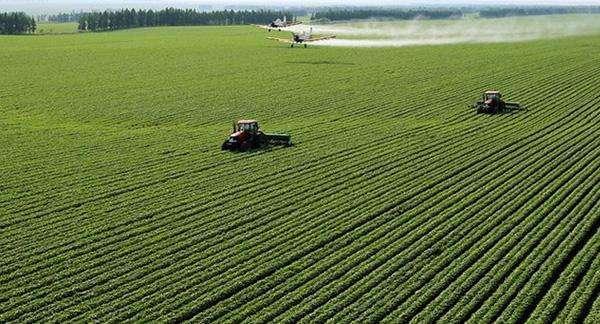 乡级政府耕地保护责任目标考核方案