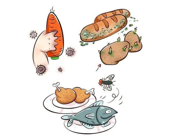夏秋季如何预防食源性疾病(食物中毒)