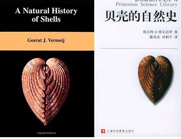 《贝壳的自然史》读后感读书笔记