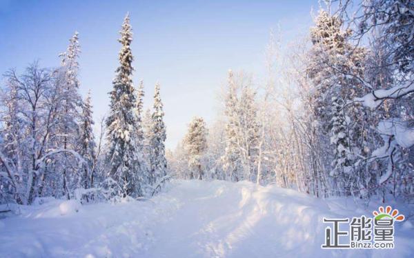 冬天来了作文500字写景作文
