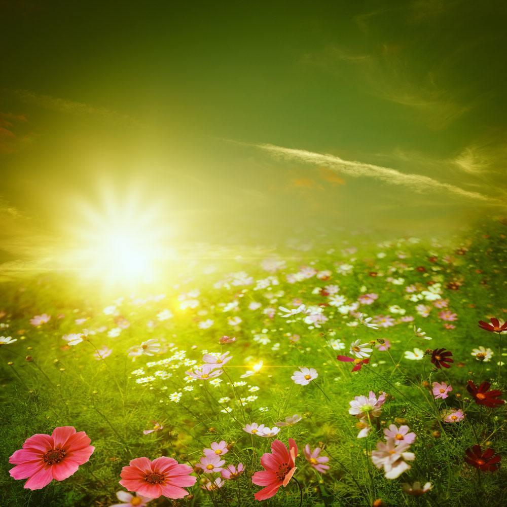 午安心语正能量一句话:人生需要奋斗