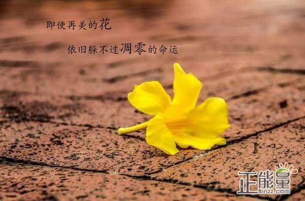 9月19日经典心情语录:别考虑太多,青春有限,加油吧!
