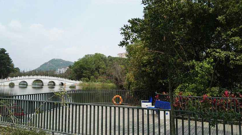 美丽的鸳鸯湖公园作文400字写景作文