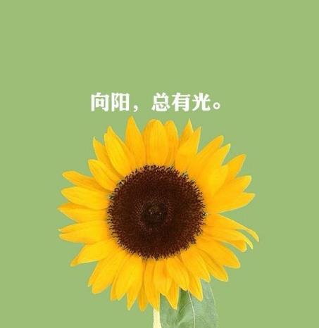 经典励志正能量语录:心怀梦想,一路向阳