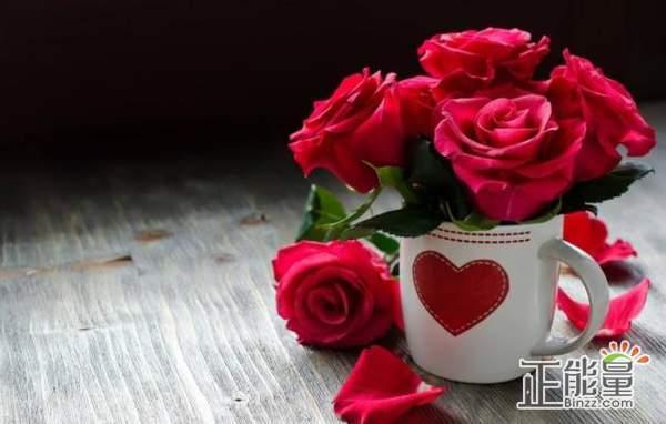 经典个性说说:爱过的人会忘记,疲惫心酸也会消散。
