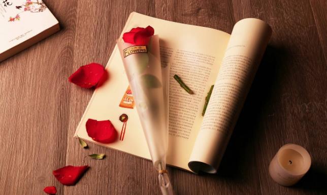 爱情励志语录:女人活出高质量的生活,就有高质量的爱情。