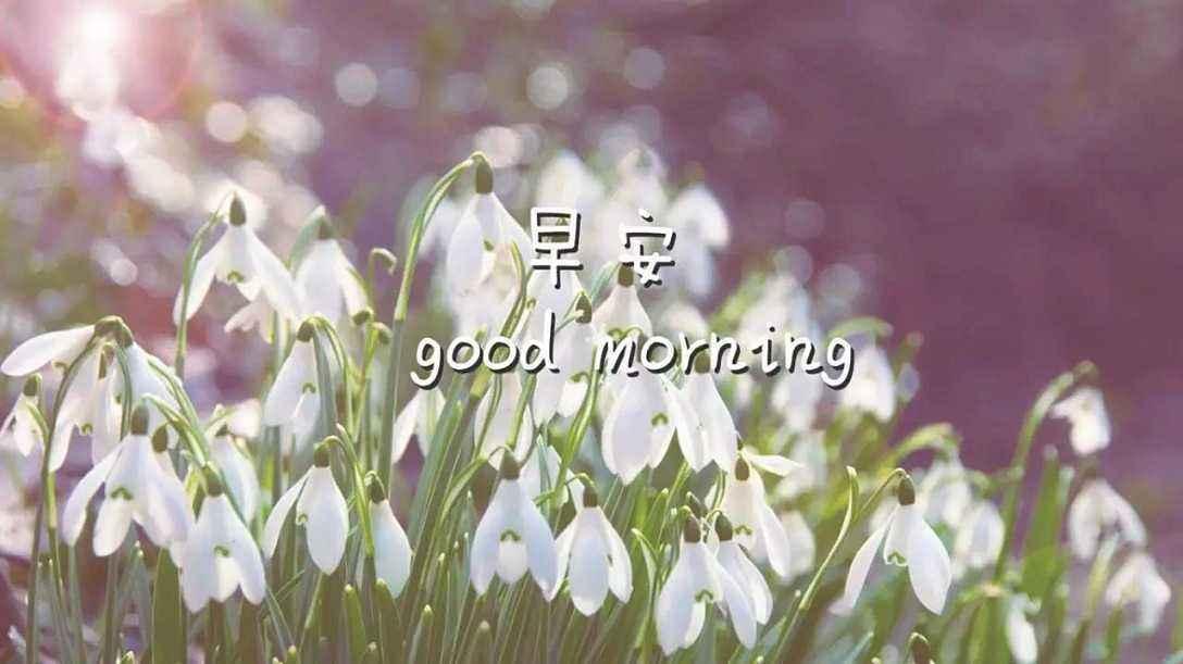 早安心灵鸡汤澳门金沙在线娱乐官网语录:不放弃一点机会,不停止一日努力