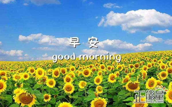 正能量励志简短早安心语:人生太匆忙,取舍是一种态度
