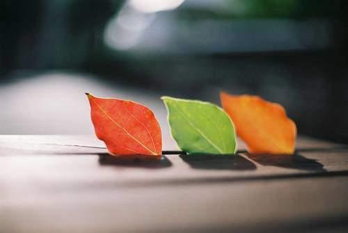【在成长过程中】分享成长过程中的瞬间感悟语录【新】