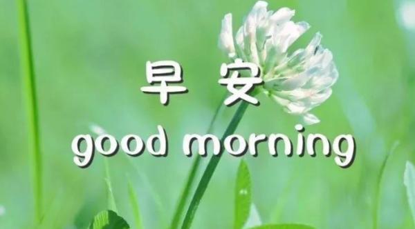 清晨问候语励志每日早晨正能量语录